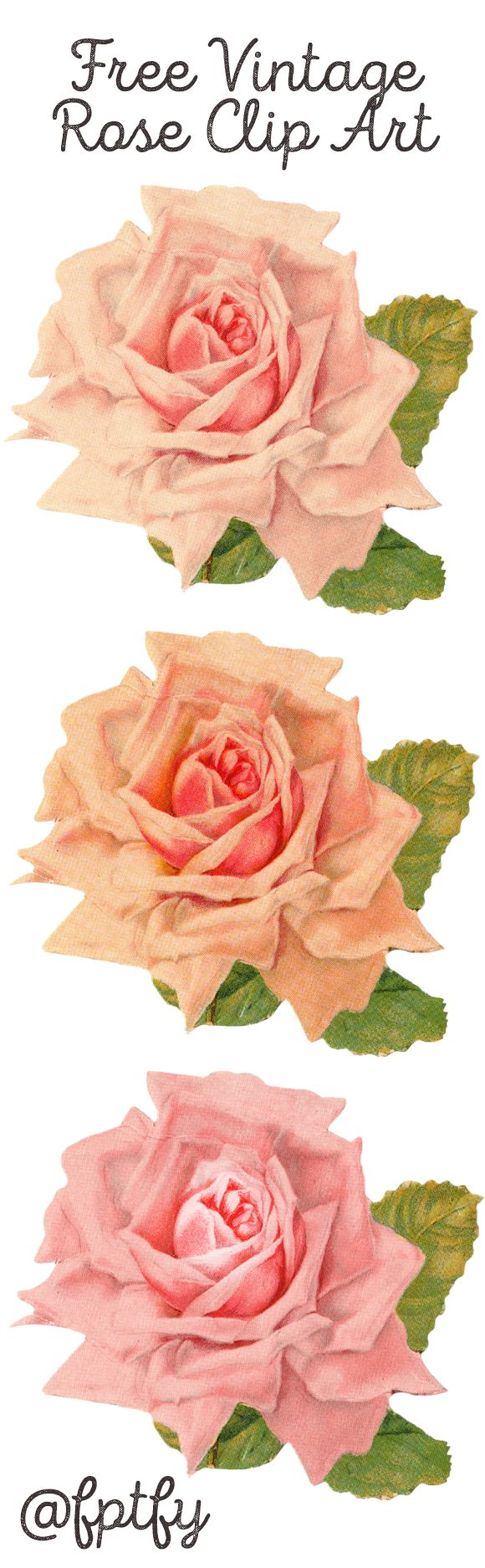 Free Beautiful Vintage Rose Clip Art available for personal